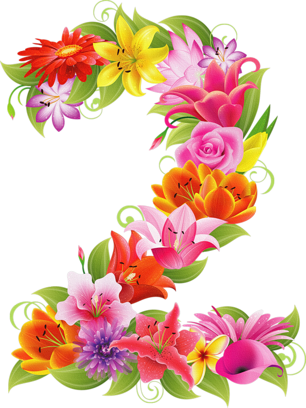 Flowers clipart number.  png pinterest milestone