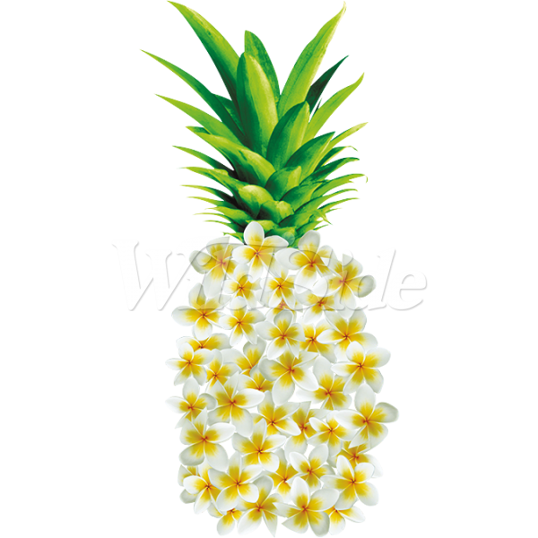Made of the wild. Flowers clipart pineapple