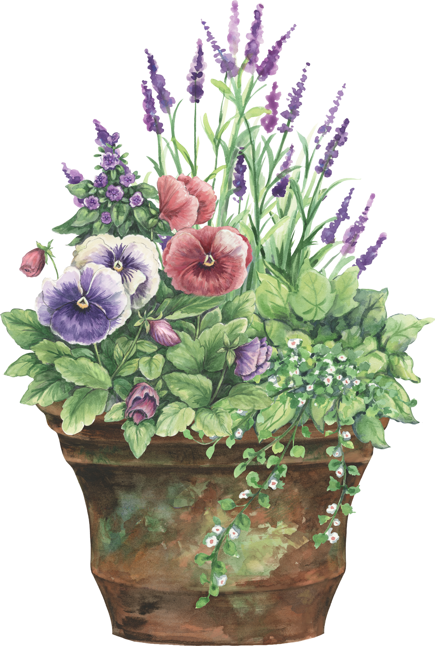 Gardening clipart watercolor. Floral planter watercolors forever