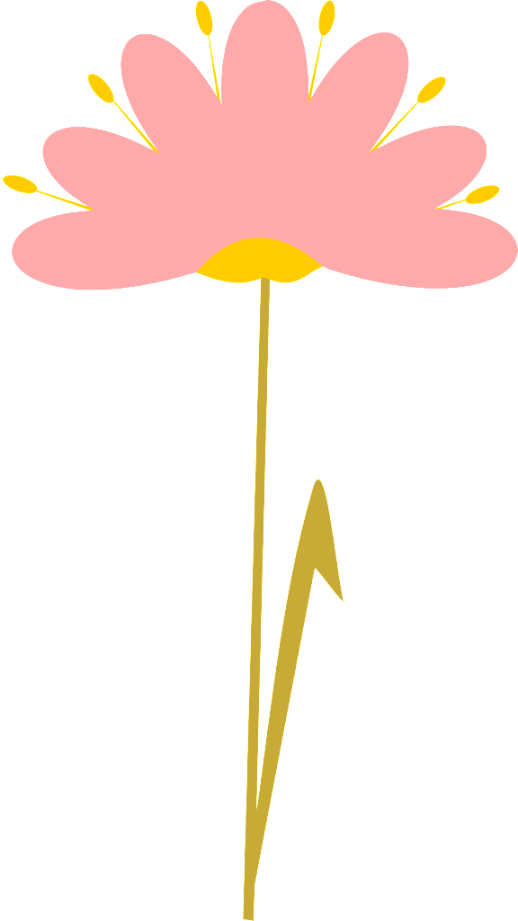 collection of flower. Flowers clipart transparent background