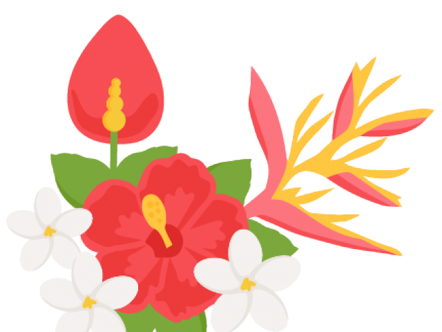 Flowers clipart tropical. Cliparts free download clip