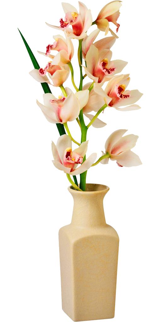 Flowers clipart vase. Flower clip art transprent