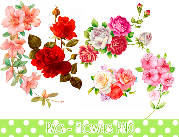 Pack flowers by minmeyprints. Flower png deviantart