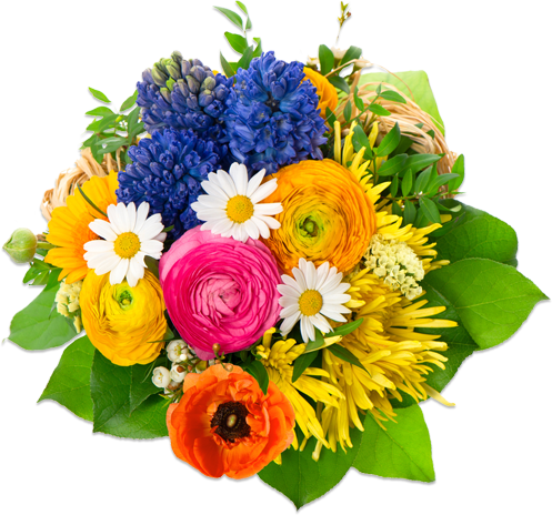 Flower image png. Flowers mart