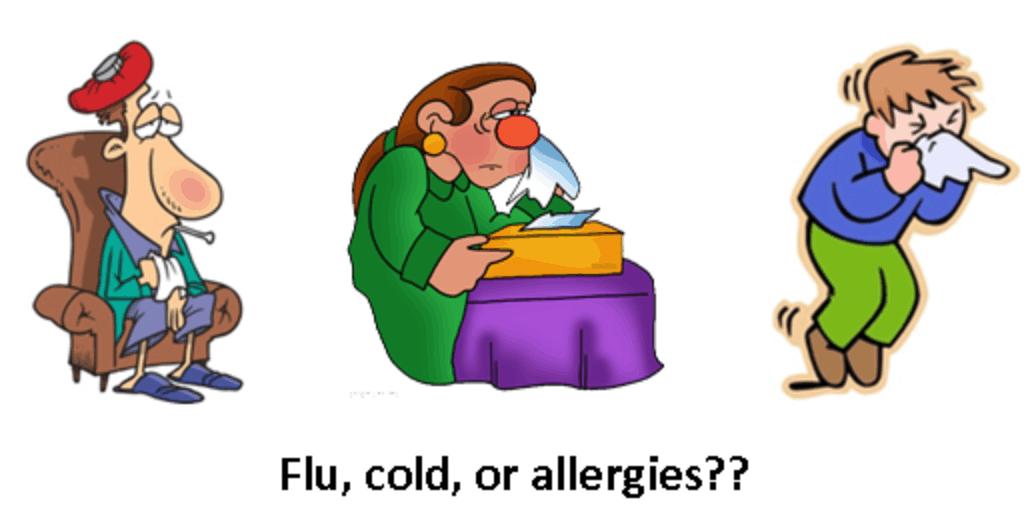 Png transparent images pluspng. Flu clipart winter