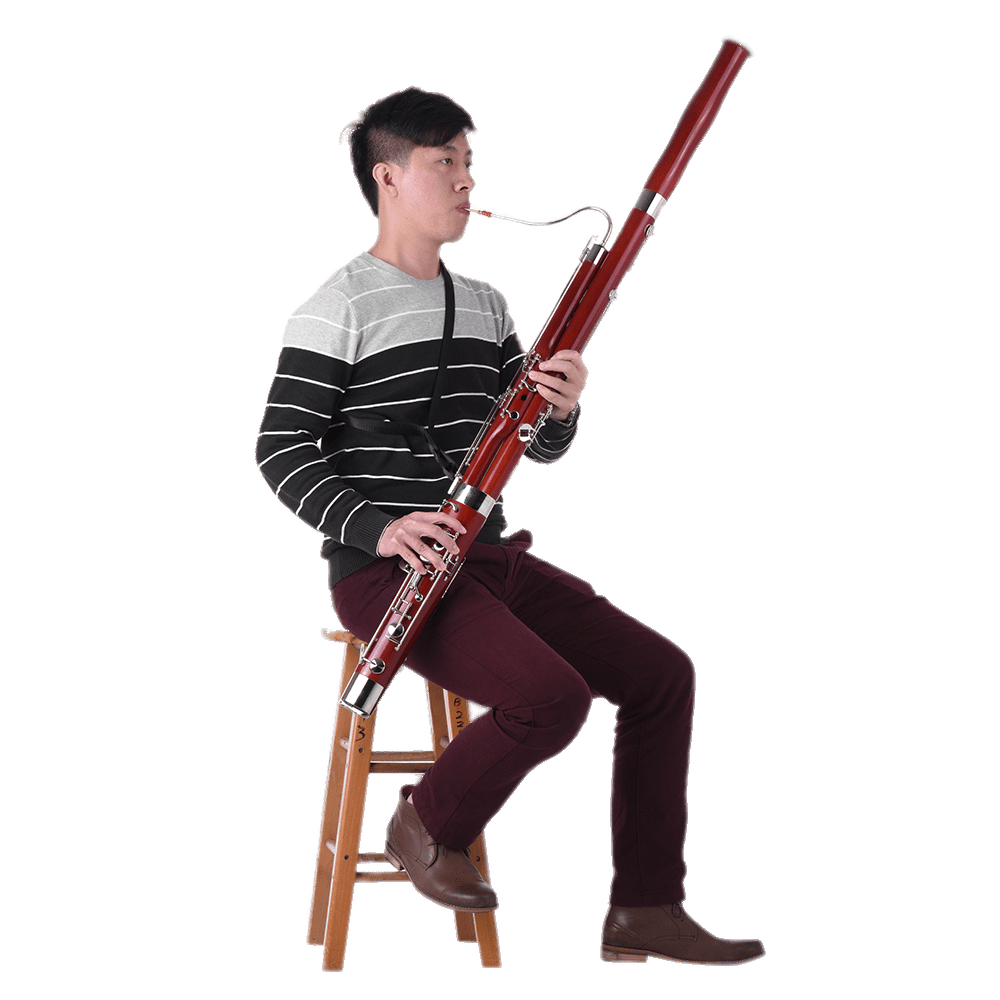 Musician playing the transparent. Flutes clipart bassoon