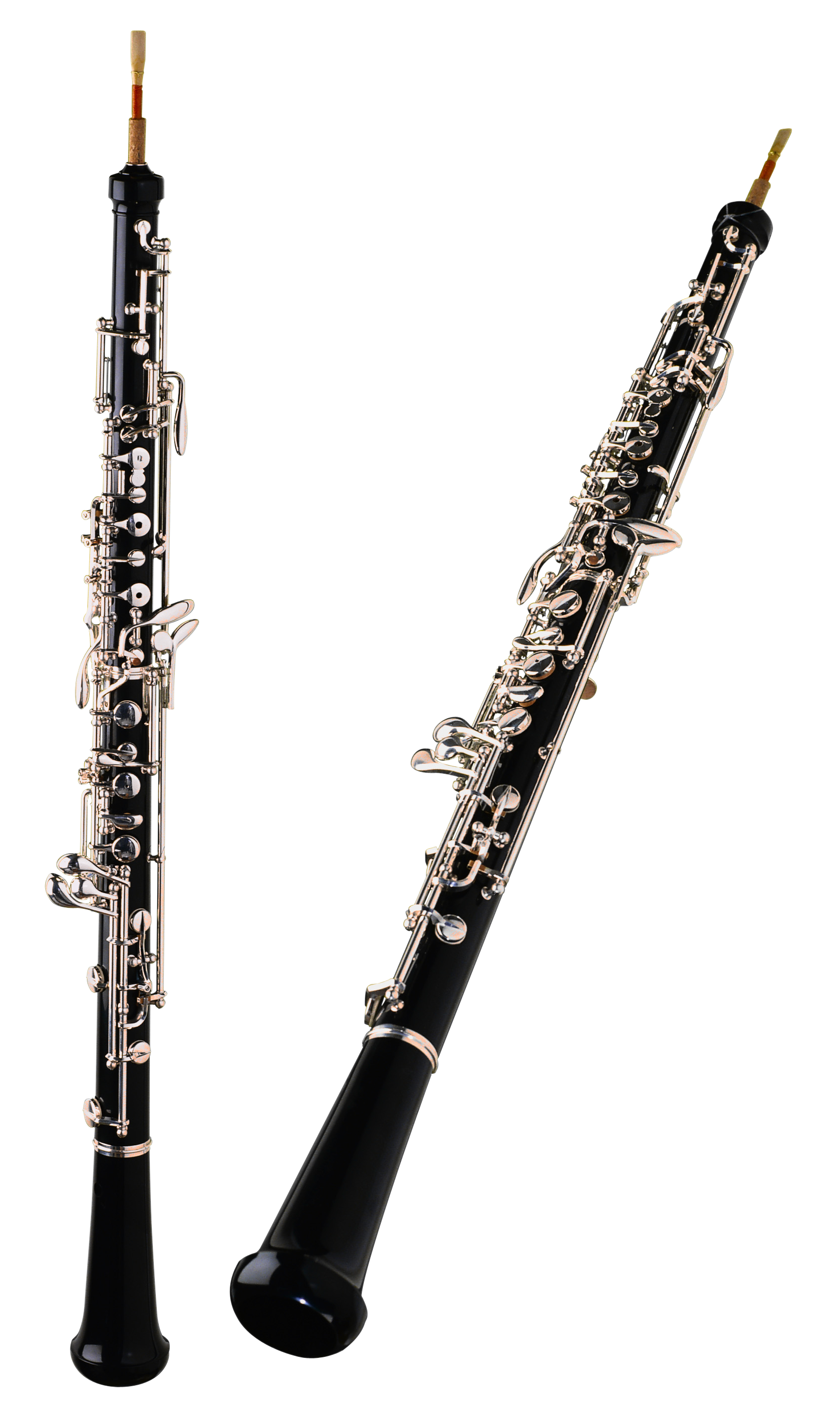Png images free download. Flute clipart clarinet player