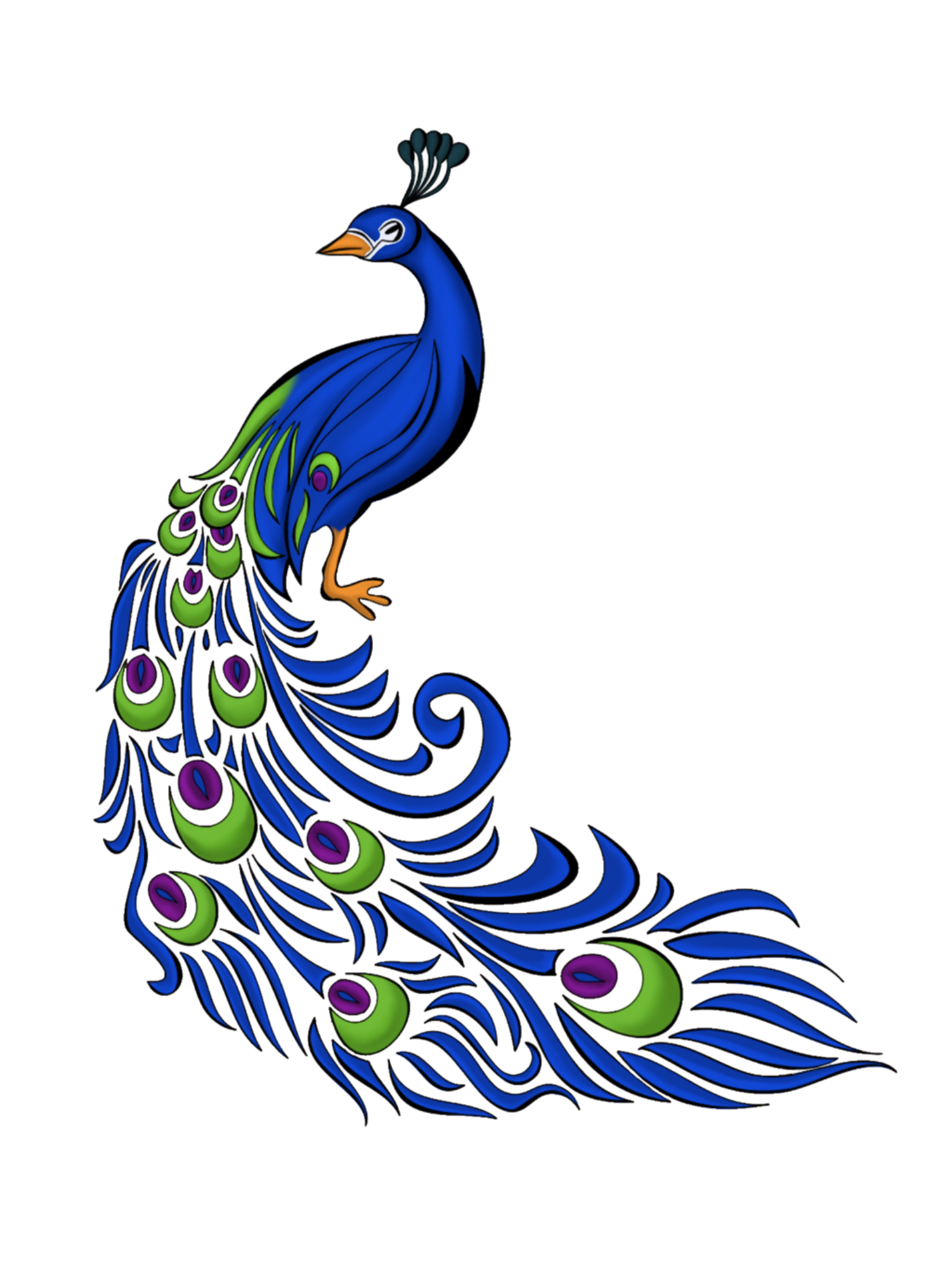 Flutes clipart peacock feather.  collection of drawing