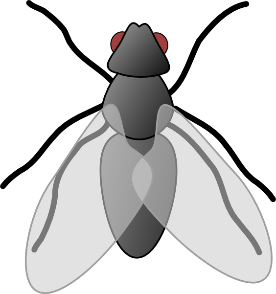 The top best blogs. Fly clipart