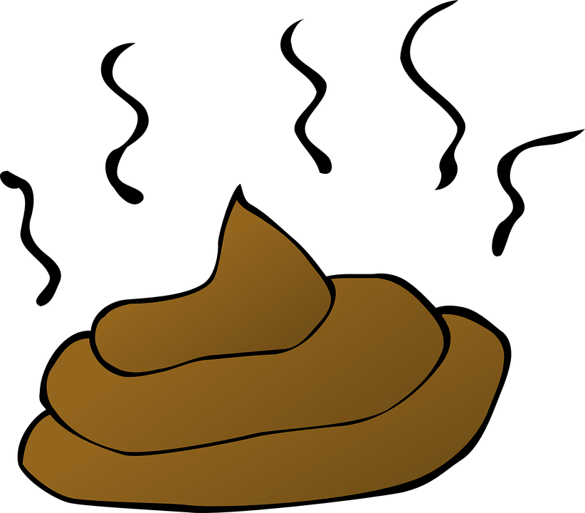 Fly clipart filthy. Collection of free excreta