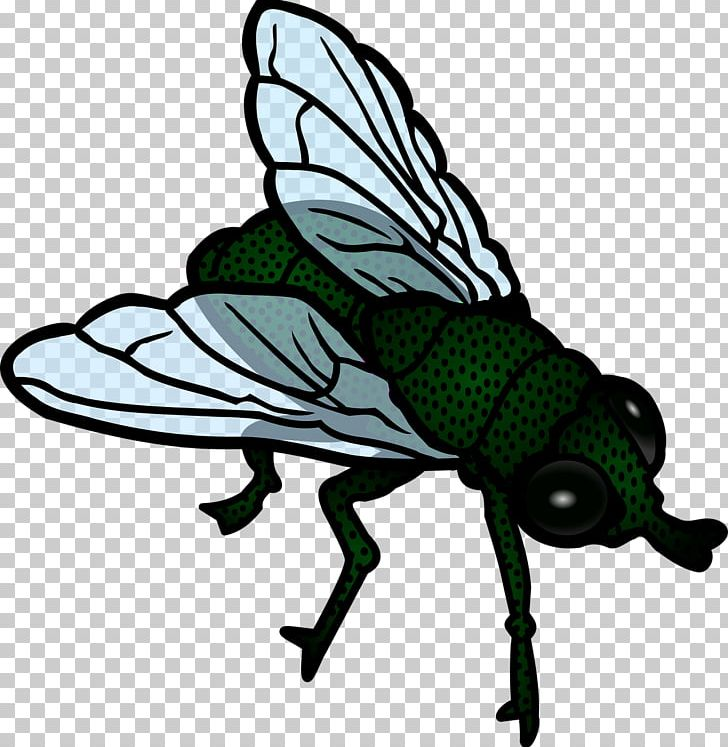 Flight png airplane animal. Fly clipart flying fly