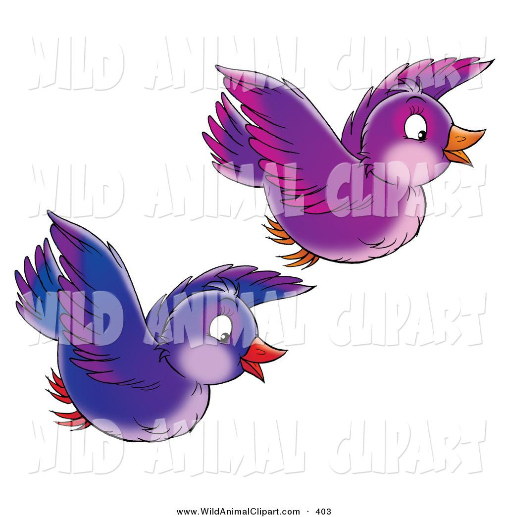 Flying Parrot Stock Illustrations – 3,764 Flying Parrot Stock  Illustrations, Vectors & Clipart - Dreamstime