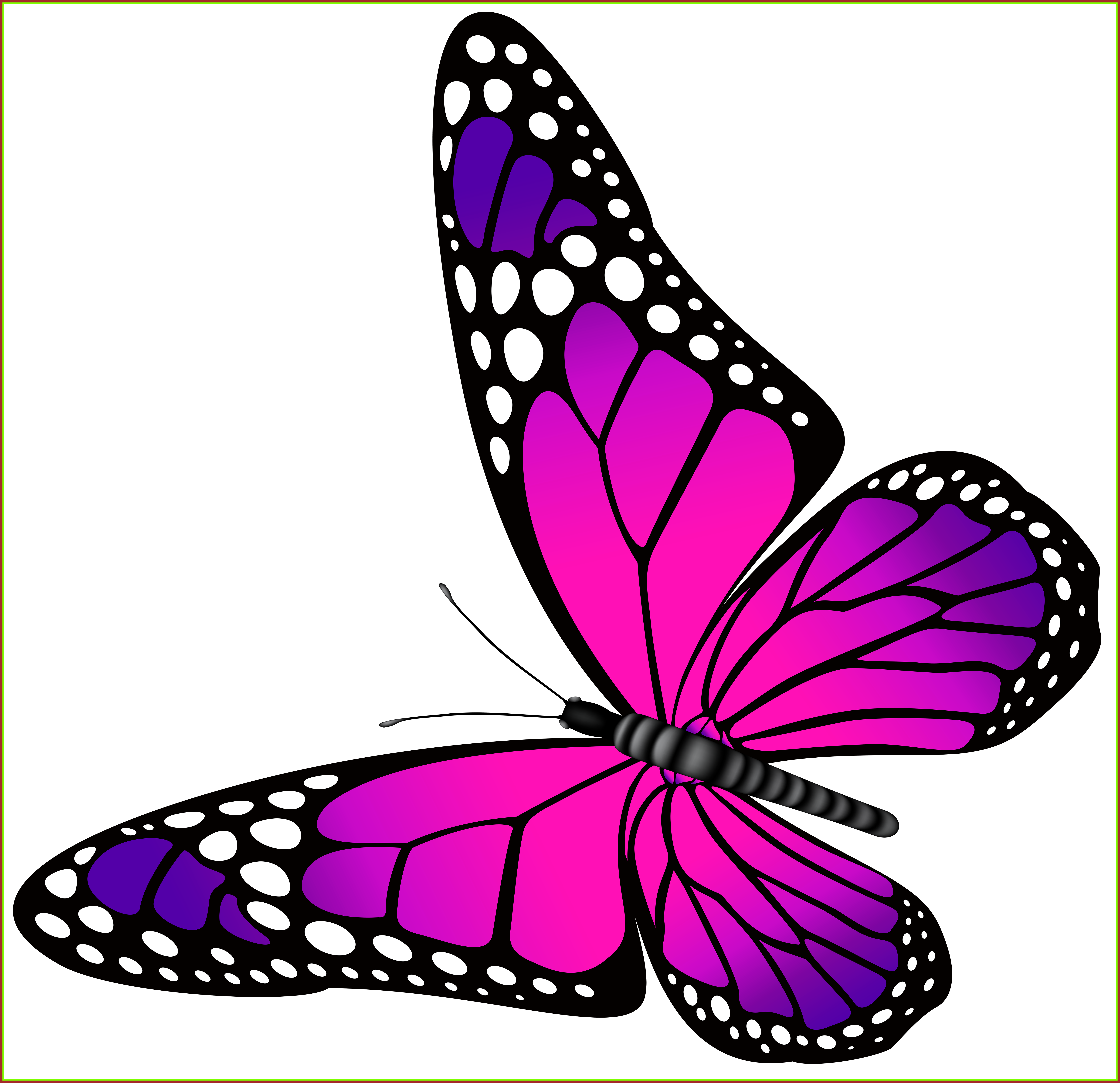 Flying clipart cute, Flying cute Transparent FREE for ...
