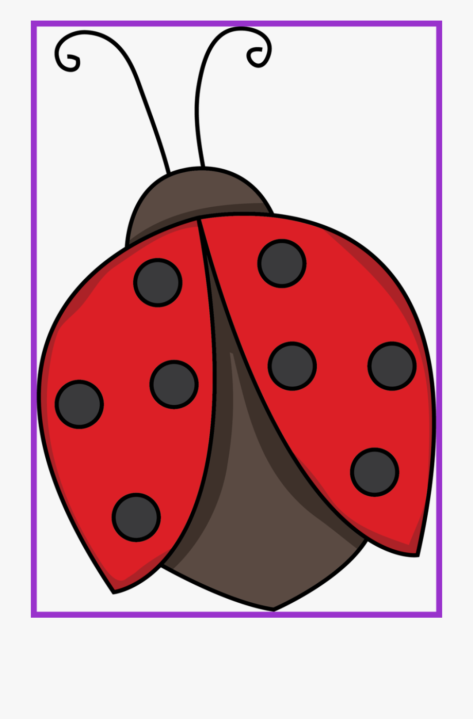 Stunning flying black and. Ladybug clipart real