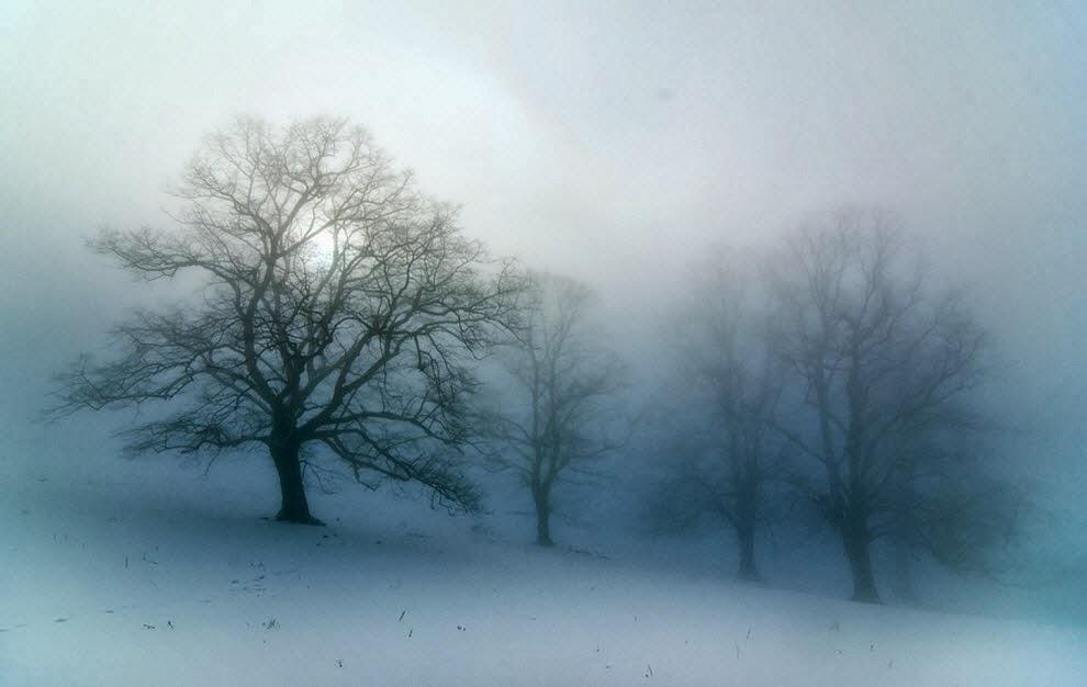 X free clip art. Fog clipart foggy day