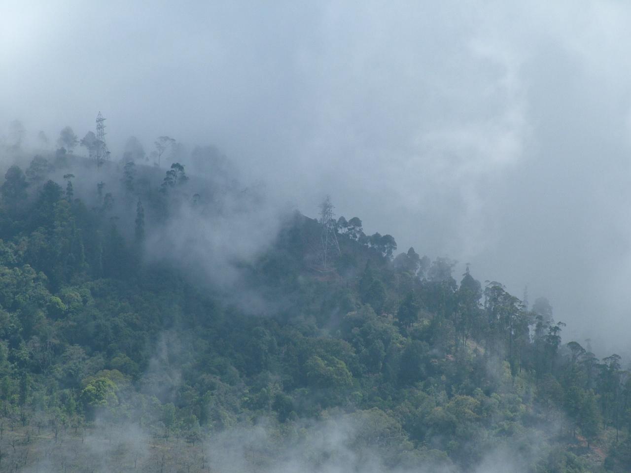 Mist look at clip. Fog clipart misty