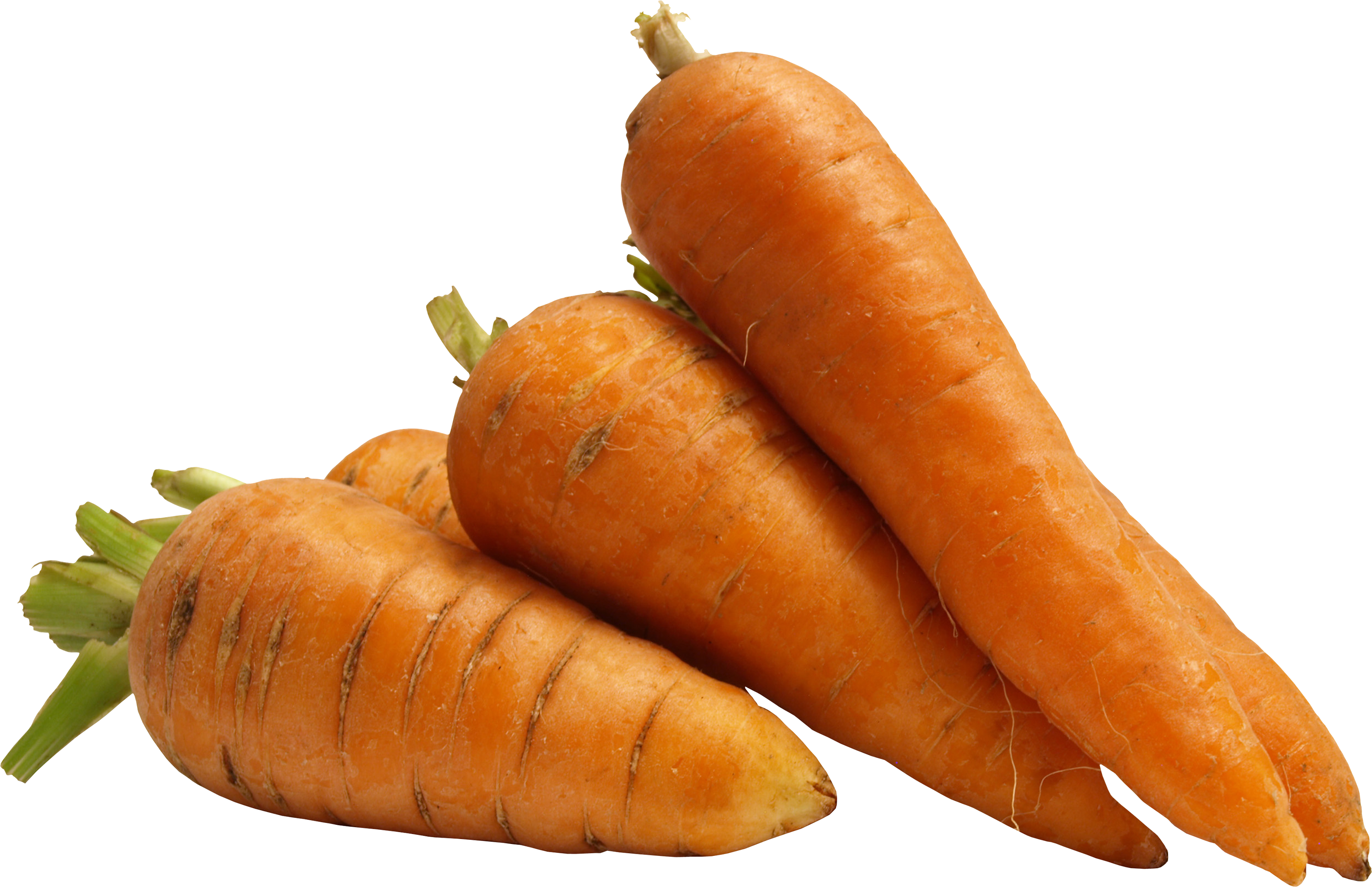 Foods clipart carrot. Png image free download