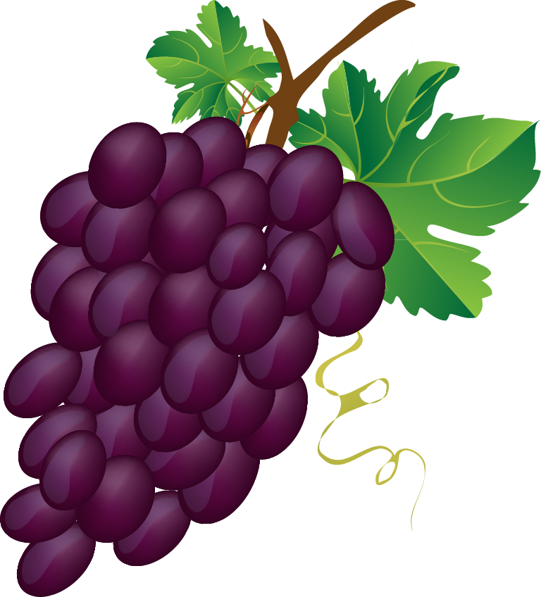 Grapes free to use. I clipart grape