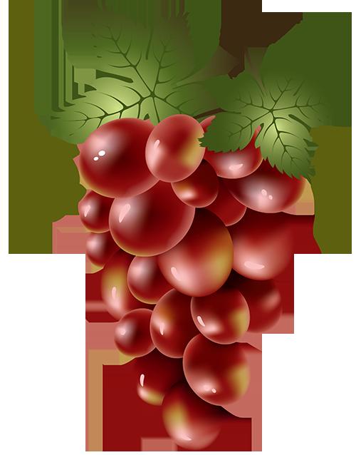 Grapes printables pinterest decoupage. Food clipart grape