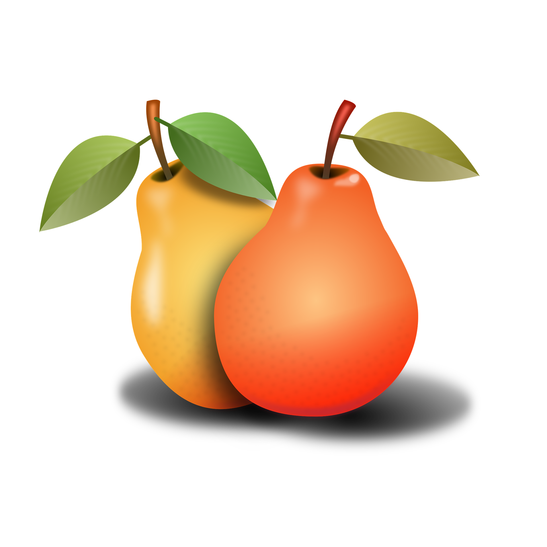 Pears xx everyday pinterest. Foods clipart tree