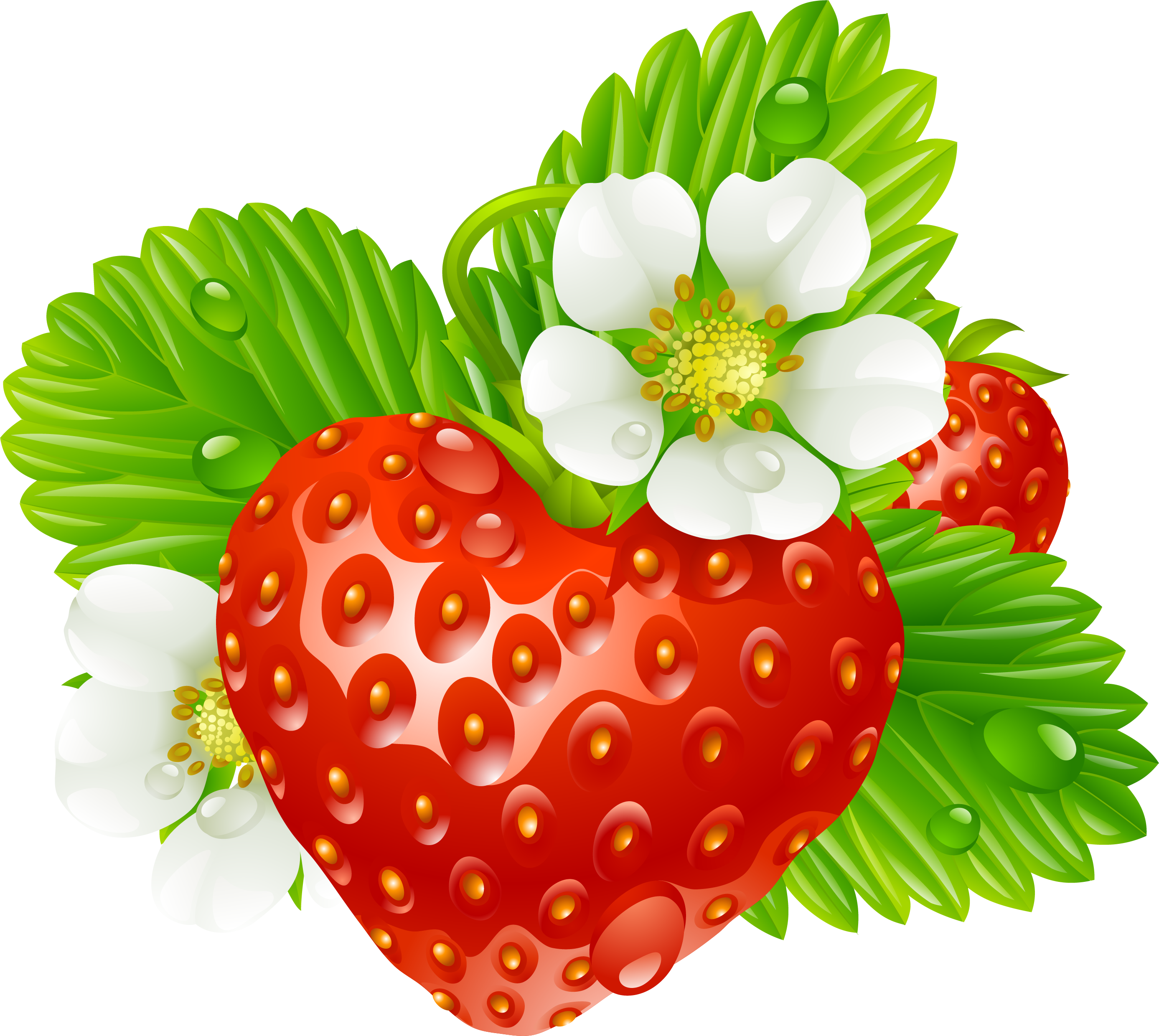 Strawberry tea clip art. Strawberries clipart watercolor