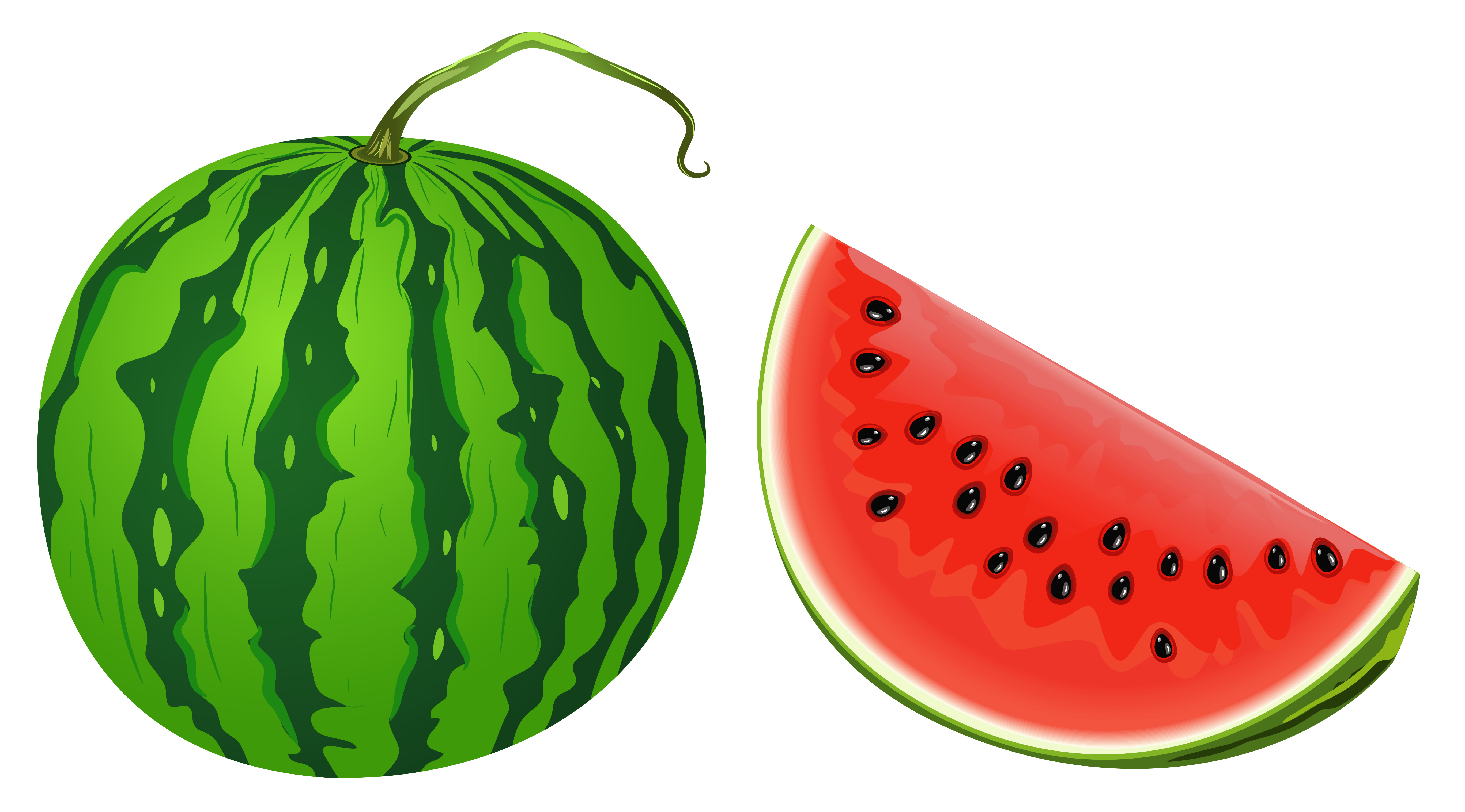 Watermelon clipart sihat. Png vector image gallery