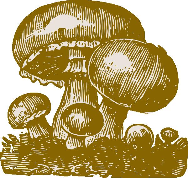 Mushrooms clipart mush. Clip art at clker