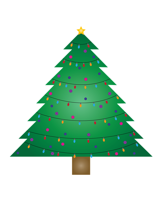 Trees shop of buy. Library clipart christmas