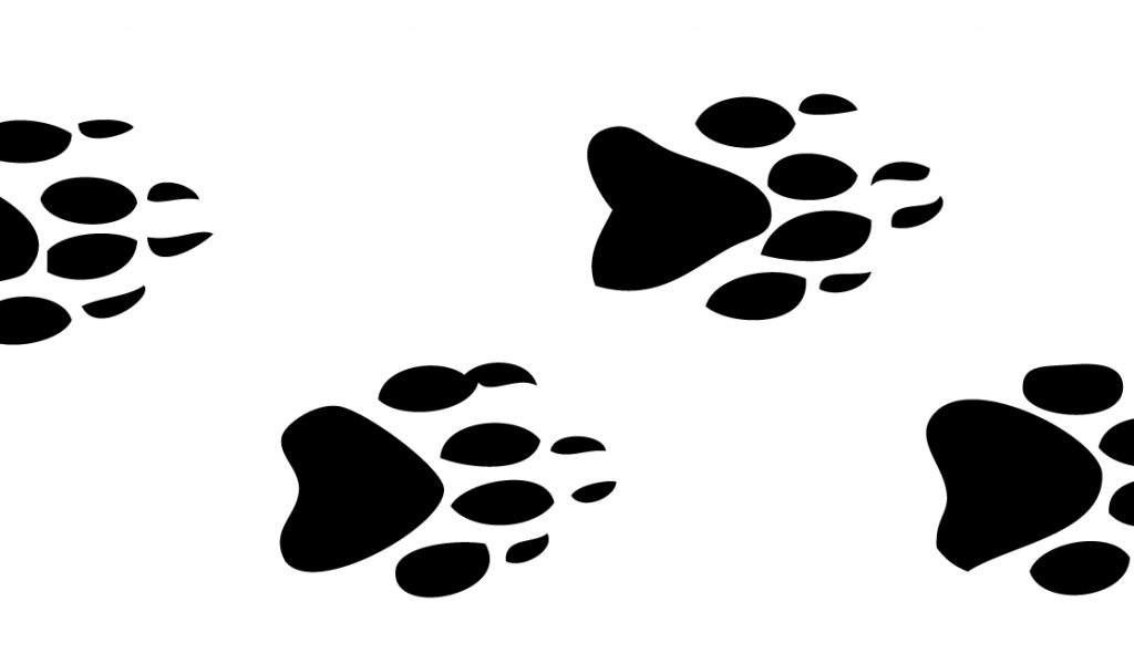 Footprint clipart animal. Free tracks cliparts download