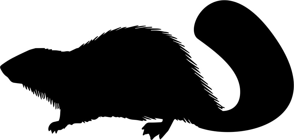 footprints clipart beaver