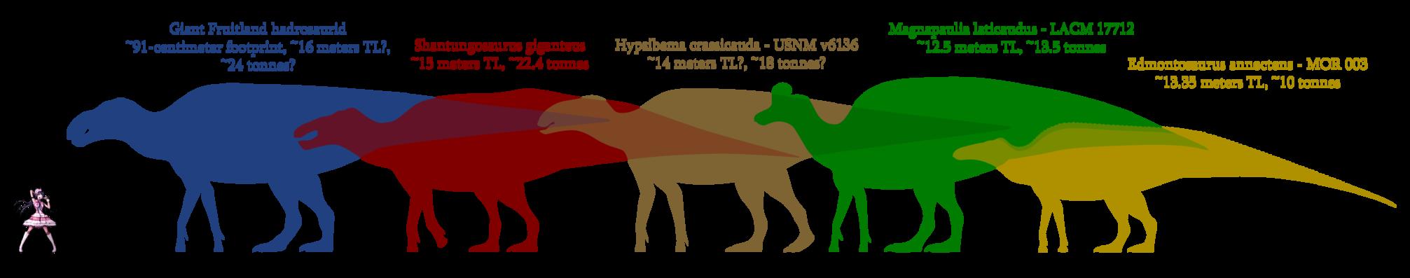 Footprint clipart camel. Keehsay s deviantart favourites