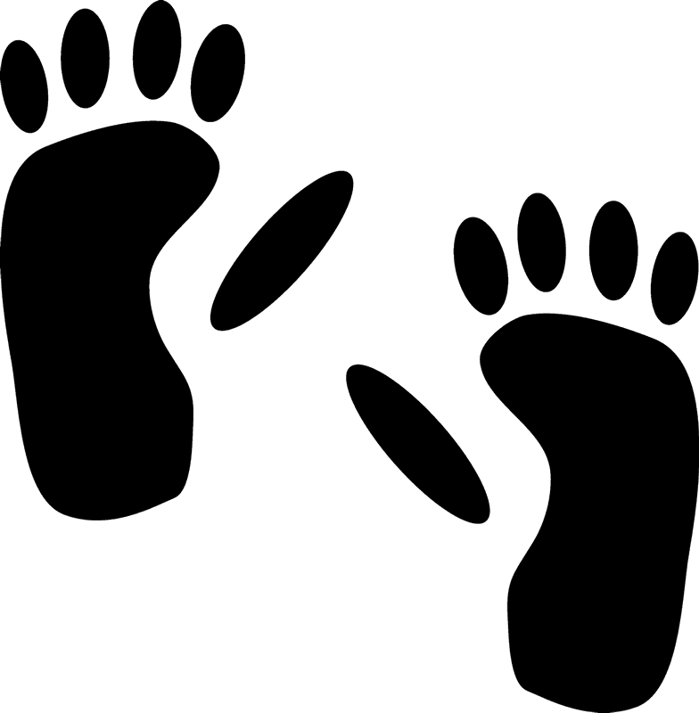footprint huge freebie. Footsteps clipart pathway