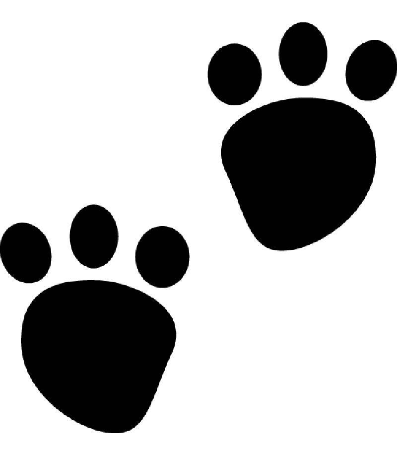 Red clipart paw print, Red paw print Transparent FREE for