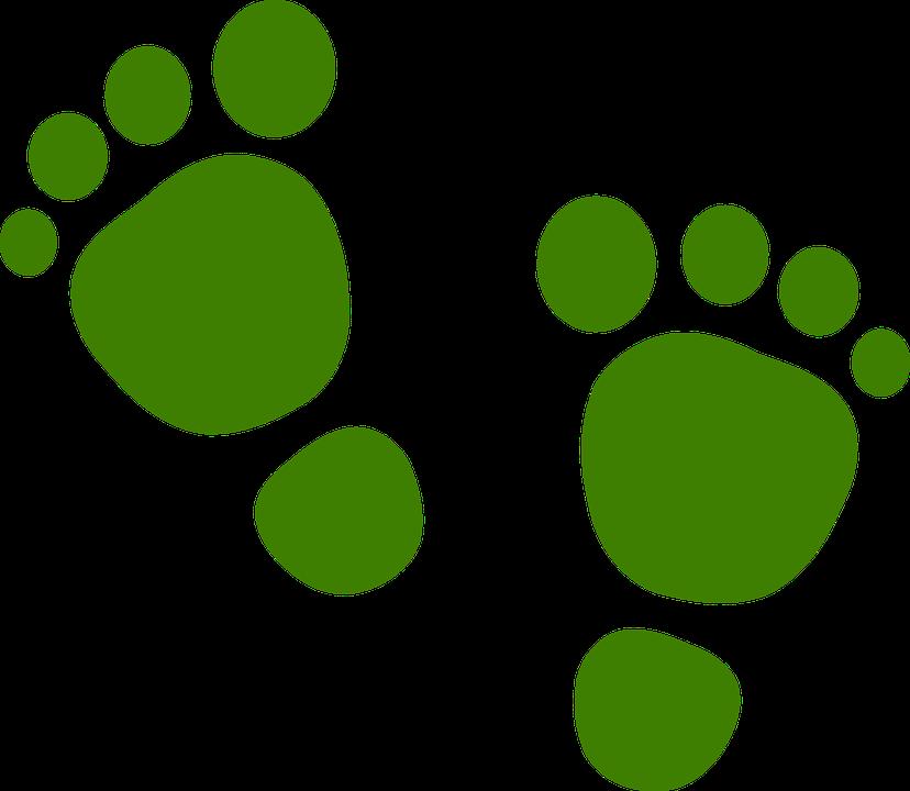 Footprints cliparts shop of. Footprint clipart monster