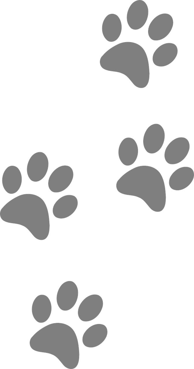 Free image on pixabay. Pawprint clipart footprint