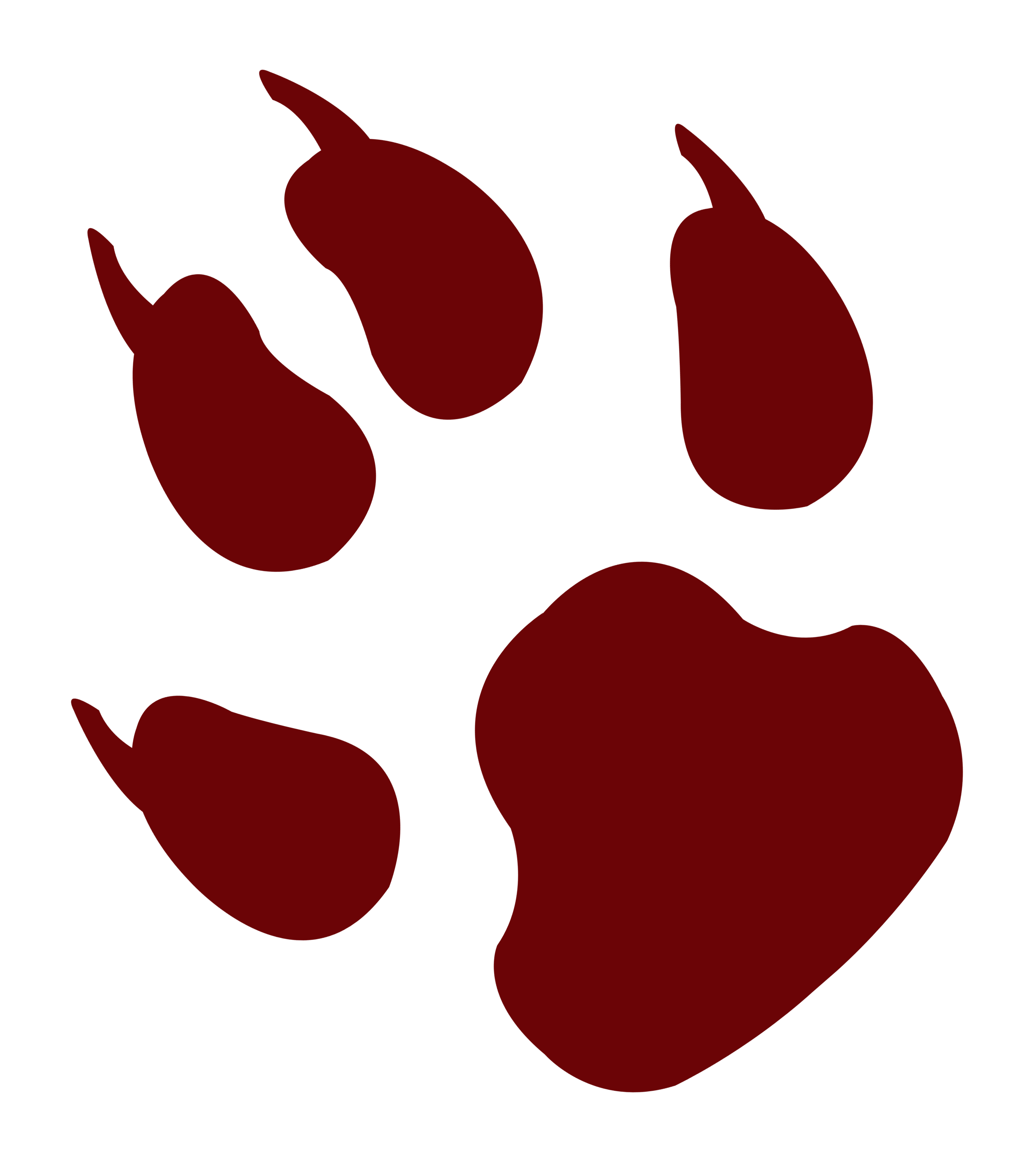 Animal footprint png image. Footprints clipart transparent background