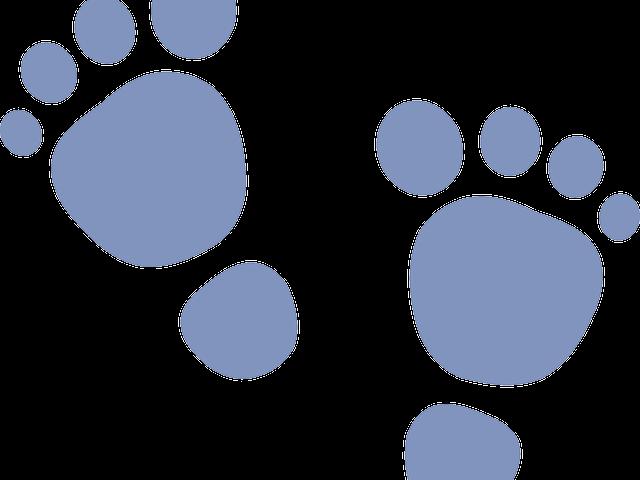 Footprints clipart baby girl. Footprint x carwad net
