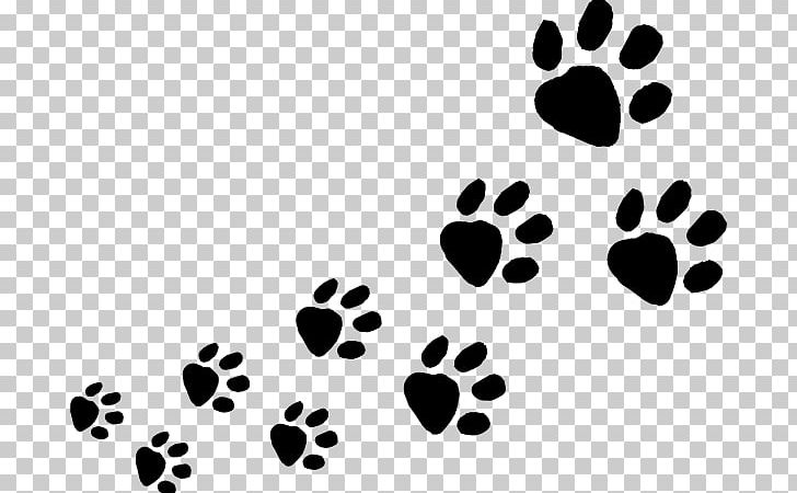 Track clipart cat. Dog animal paw png