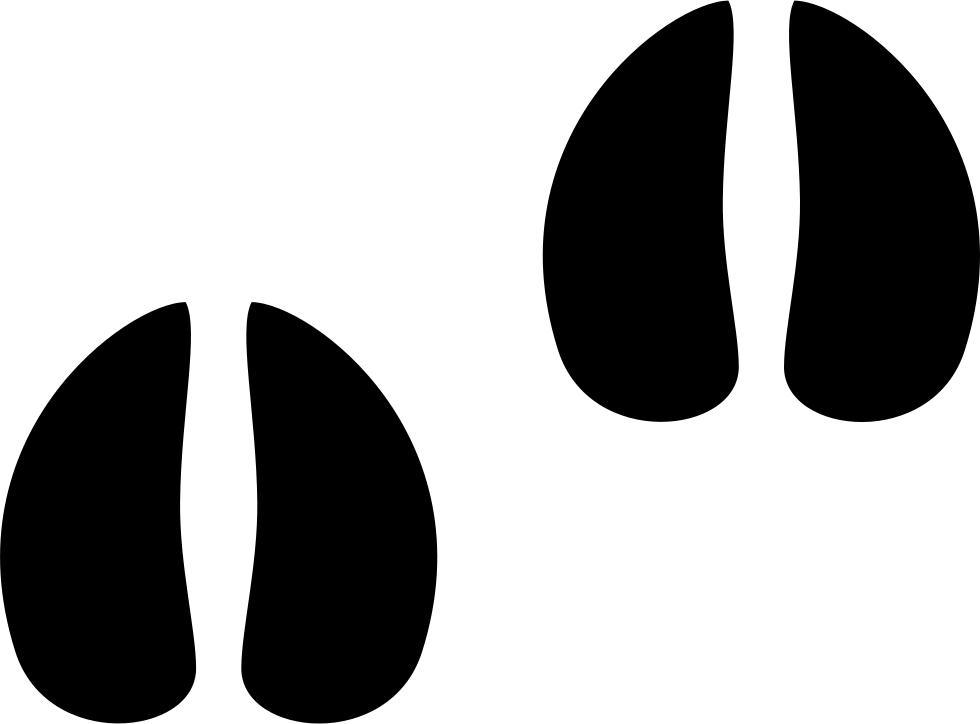 White tailed footprint clip. Footprints clipart deer