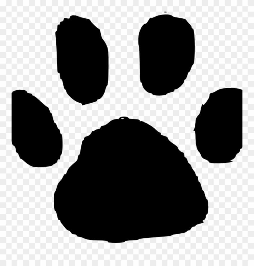 Jaguar prints print in. Paw clipart foot