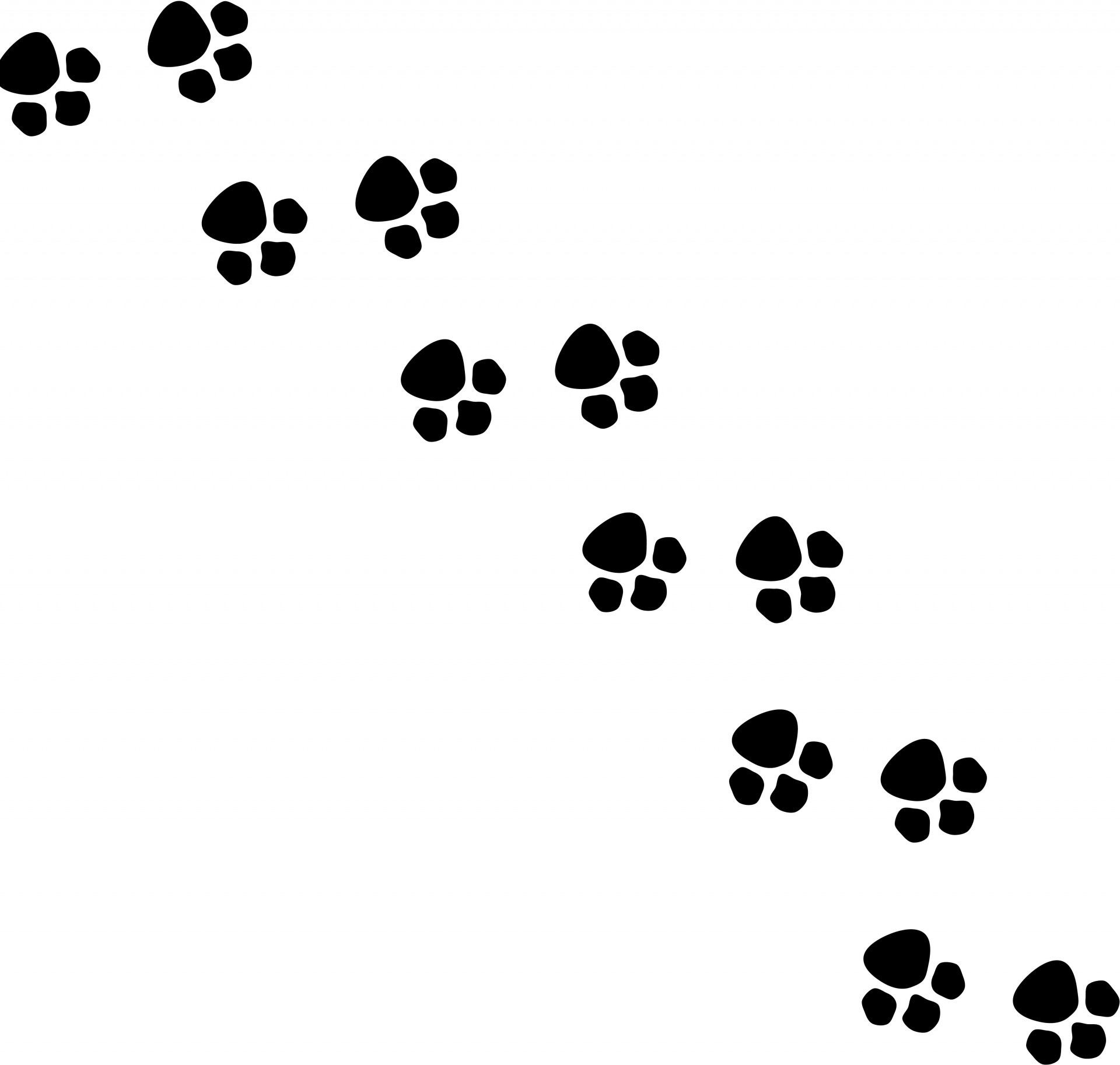 Footsteps clipart. Animal silhouette free stock