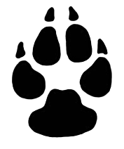 Footsteps clipart snow footprint. Paw prints dog print