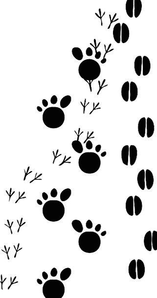 Pixcove . Footsteps clipart traces