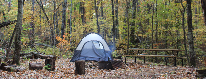 Governor knowles state wisconsin. Forest Campsite