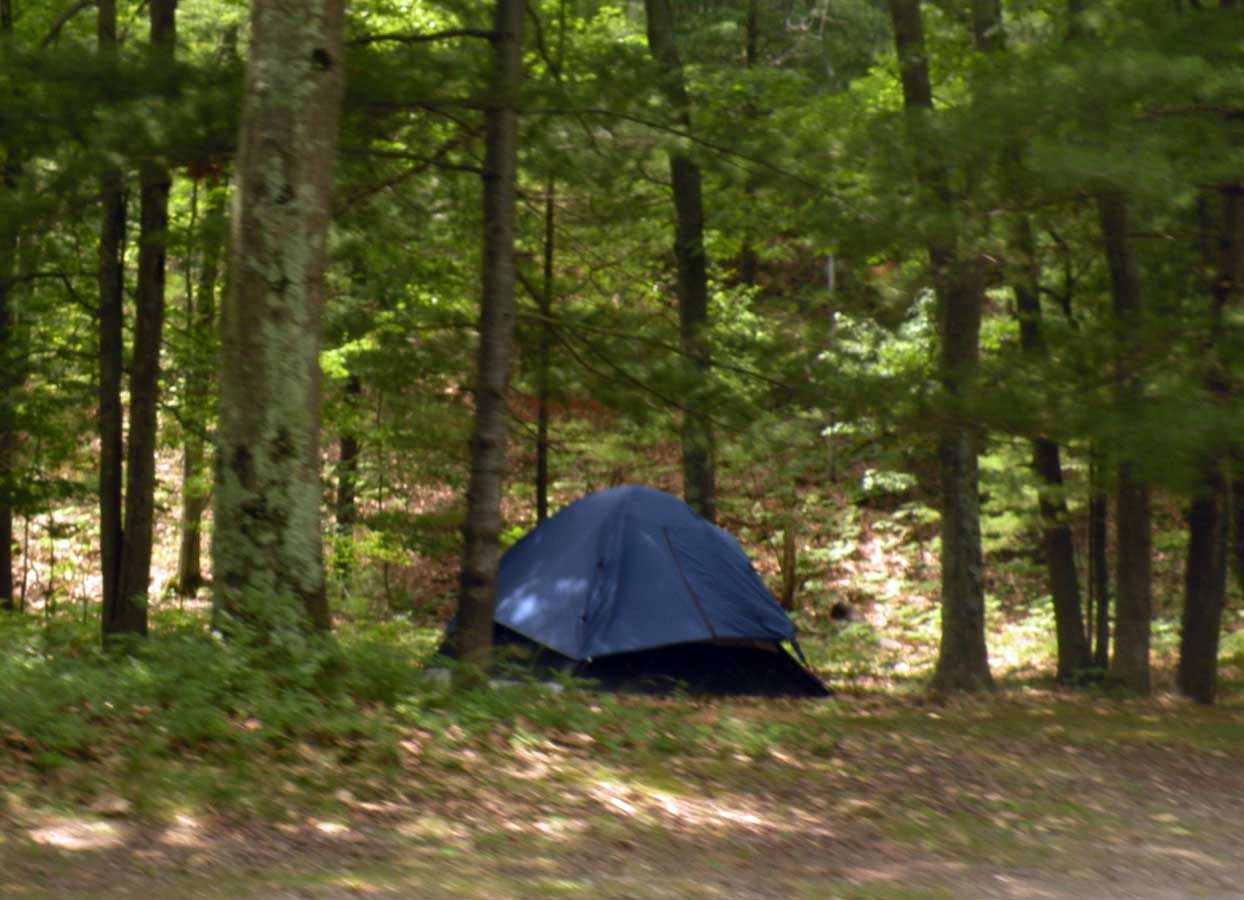 Huron manistee national forests. Forest Campsite