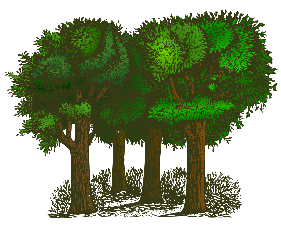 collection of trees. Tree clipart gumamela