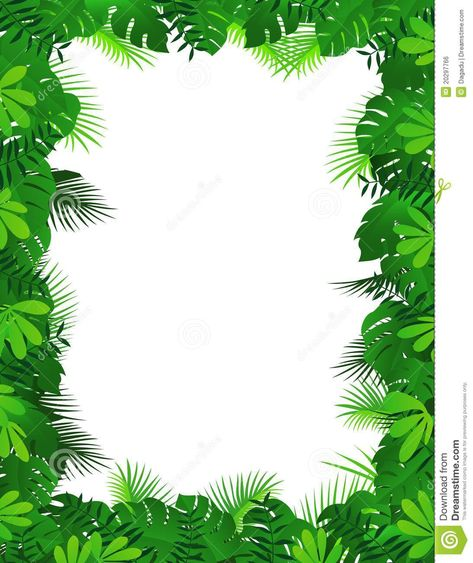 Pinterest . Jungle clipart borders
