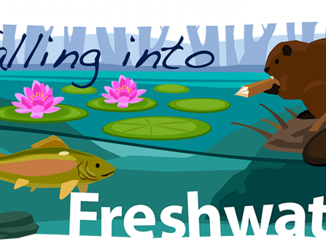 forest spring water. Hiking clipart stream