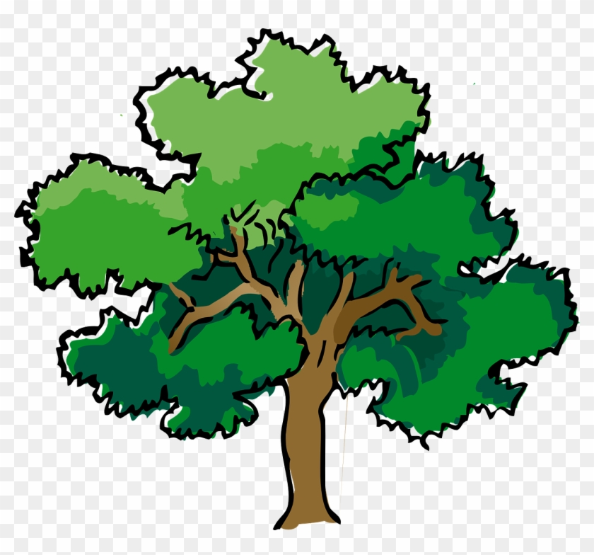 Tree clipart summer. Oak branches leaves trunk