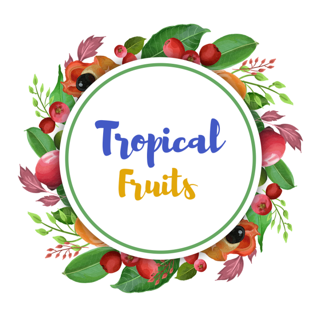 Fruits clipart wreath. Watercolor forest tropical with